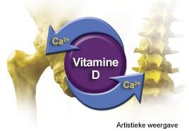Vitamine D Belangrijk Bij MS
