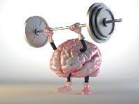 Cognitie Stimuleren Bij PPMS
