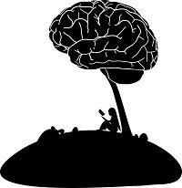 sociale cognitie