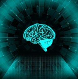 Hersenentwerken