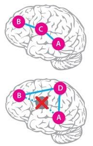 Wanneer een rechtstreekse route is geblokkeerd door een laesie in de hersenen, dan moeten er omwegen gezocht.