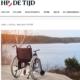 Artikel HP/De TIjd Over Stamceltherapie En MS