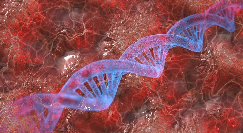 NfL: Een Nieuwe Biomarker