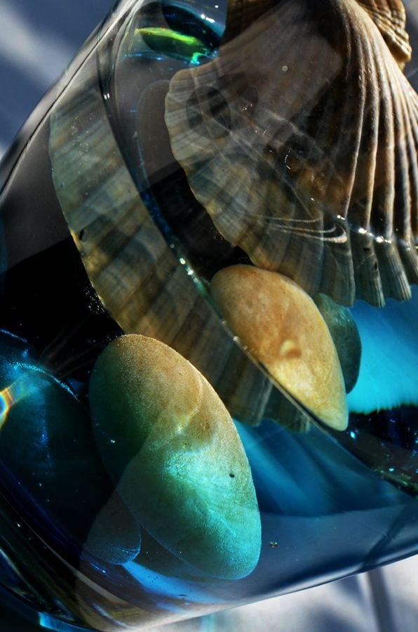 Schelpen onder water
