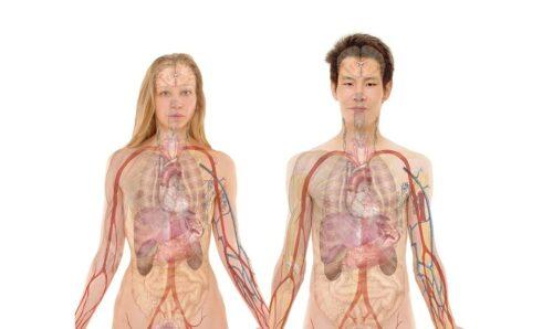 MS en lage urineweg aandoeningen