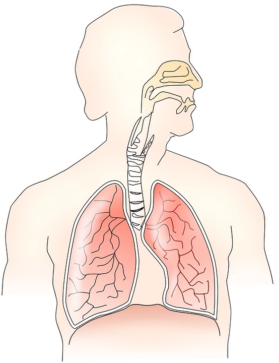 MS en ademhaling
